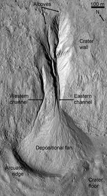 Gully age and formation mechanisms